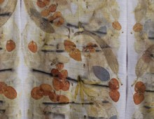 natural dyes and ecoprints on silk and wool
